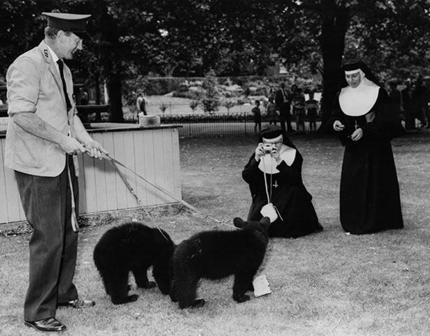 Nuns Greet Bear
